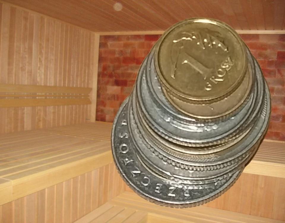 wycena sauny - ilustracja